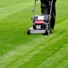 Zakres zagospodarowania terenów zieleni oraz pielęgnacja terenów zielonych